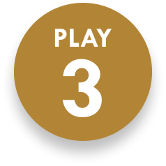 section-14-play-3.png